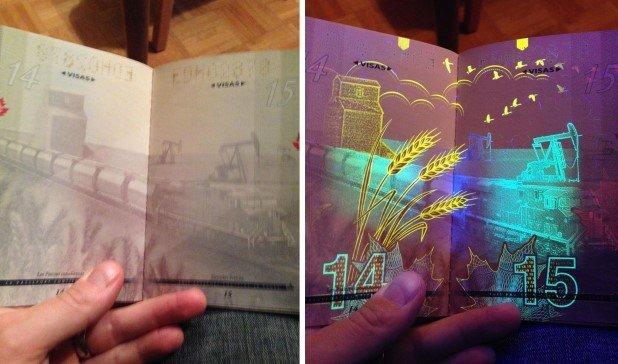 Canadian Passport Under UV Light (2)