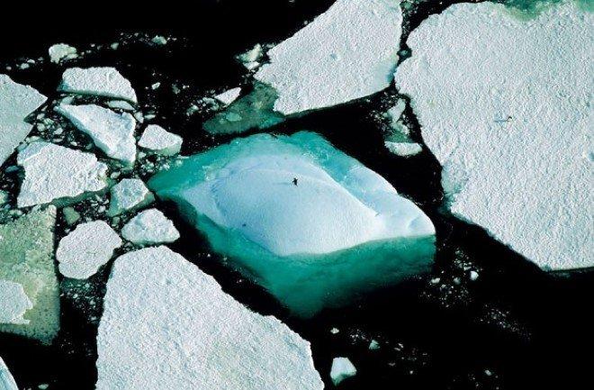 Adelie Land, Antarctica
