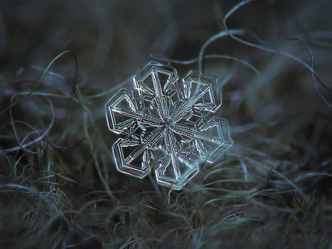 Stunning Macro Images of Snowflakes (17)