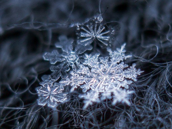 Stunning Macro Images of Snowflakes (21)