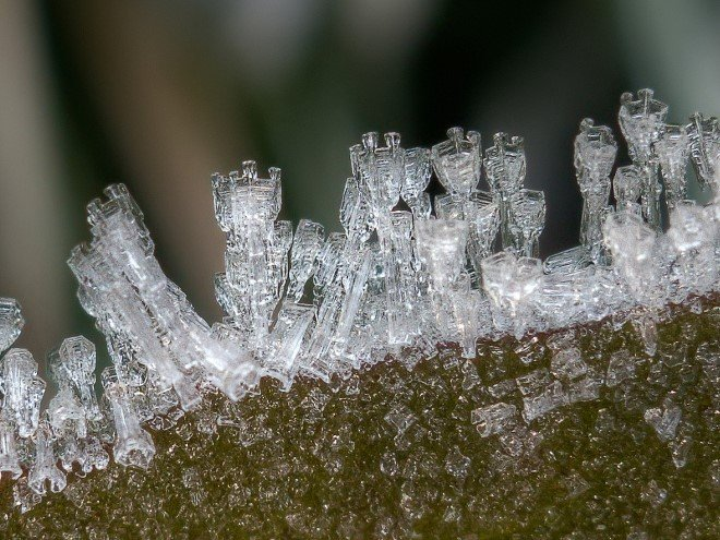 Stunning Macro Images of Snowflakes (23)