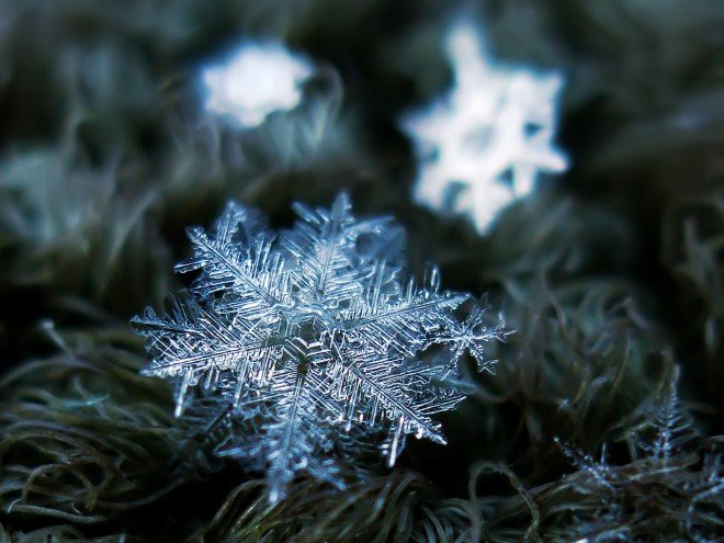 Stunning Macro Images of Snowflakes (26)