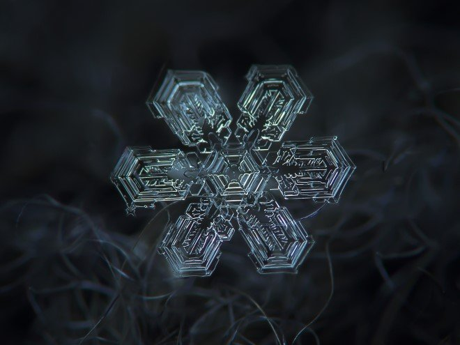 Stunning Macro Images of Snowflakes (7)