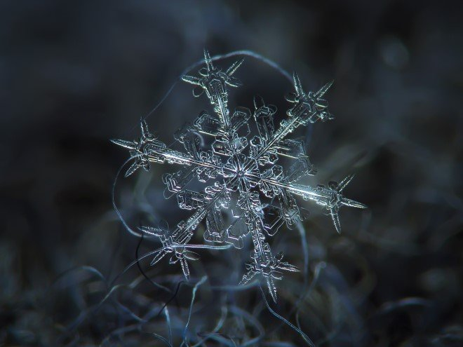 Stunning Macro Images of Snowflakes (9)