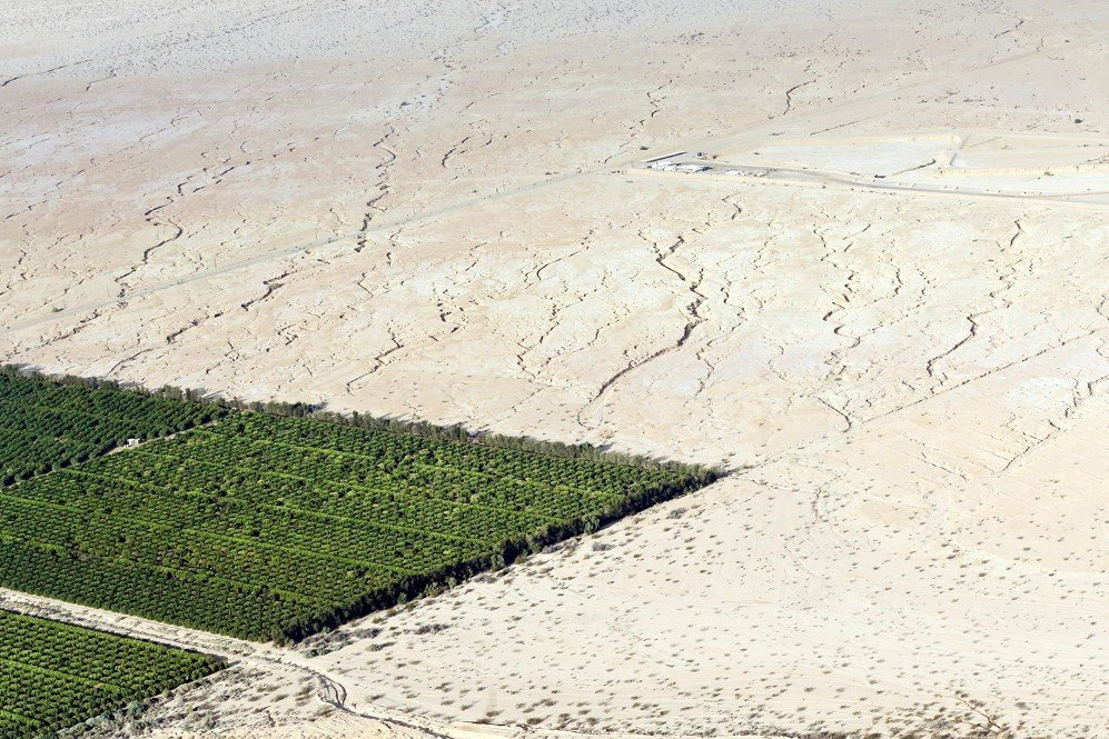 Irrigated citrus trees surrounded by bone-dry land delineate the stark impacts of the extreme drought in Westmorland, California –May 1, 2015