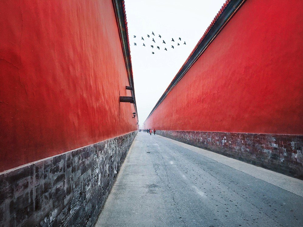 This photo was shot during a trip to the Forbidden City in Beijing. I was walking on this wide boulevard with two high red walls on both sides which really make me feel nervous and majestic. There were pigeons flying around the Forbidden City from time to time, this particular photo was one of the shots I took using the burst mode on my iPhone.