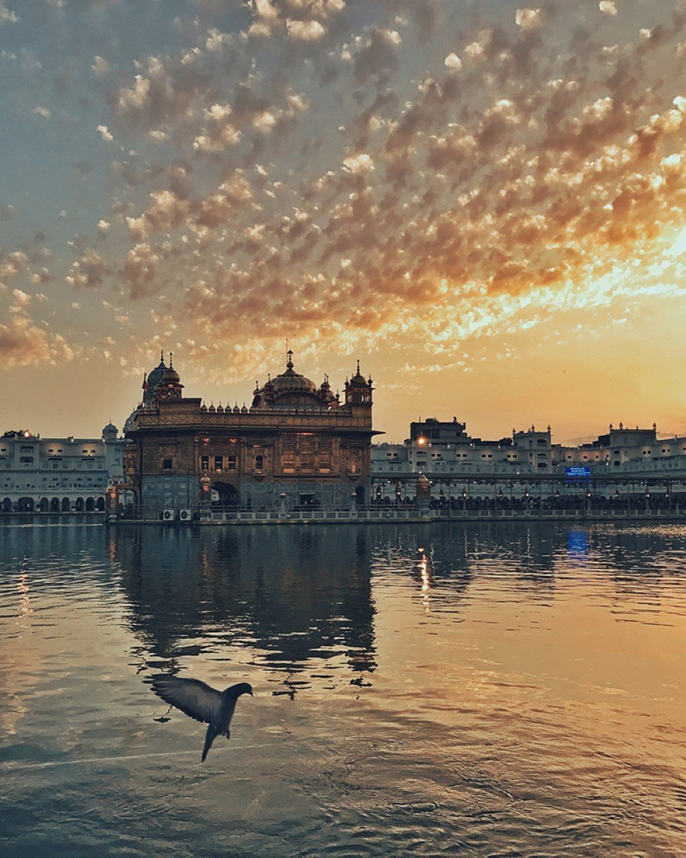 The sunset and the Golden Temple in Amritsar add radiance and beauty to each other. The ripple in water seems to be formed by doves' flapping of wings. I think photography is derived from life, and only people who love life can take a picture of temperature.