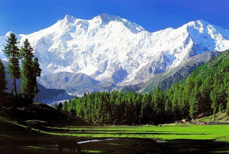 5. Nanga Parbat Top Ten Killer Mountains of the World