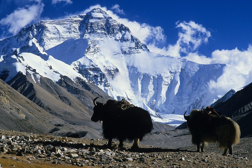 8. Mount Everest Top Ten Killer Mountains of the World