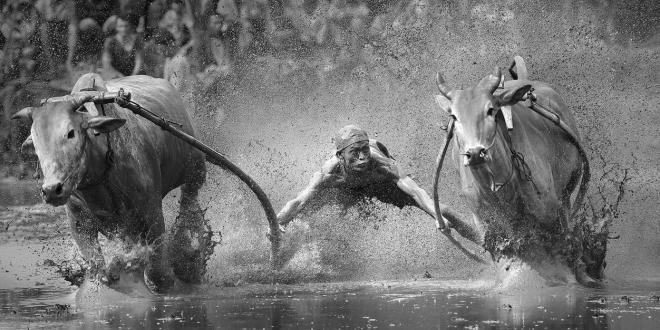 Sony World Photography Awards 2014: Professional Shortlist Revealed