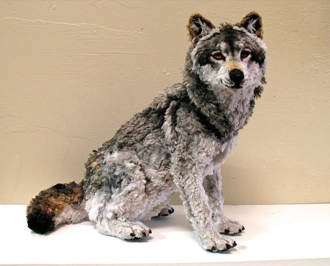 Animal Sculptures Made Entirely Out of Pipe Cleaners (1)
