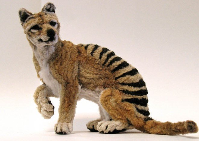 Animal Sculptures Made Entirely Out of Pipe Cleaners (11)