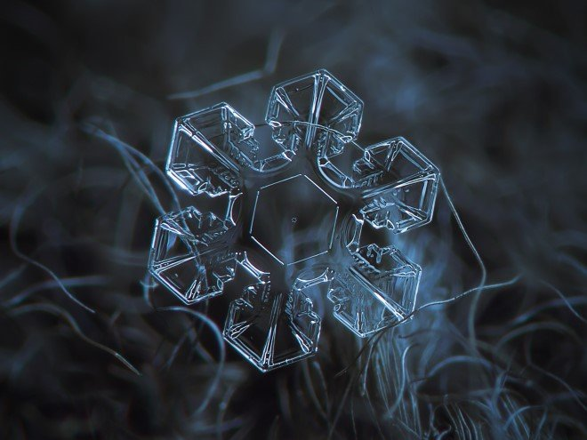 Stunning Macro Images of Snowflakes (10)