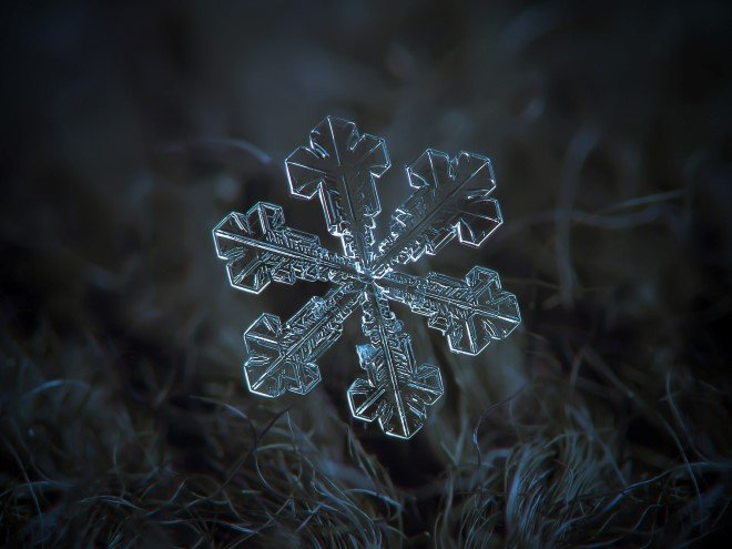 Stunning Macro Images of Snowflakes (13)