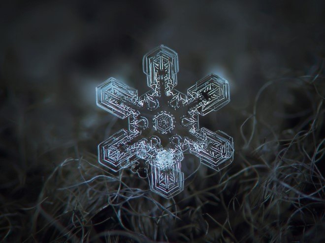 Stunning Macro Images of Snowflakes (14)