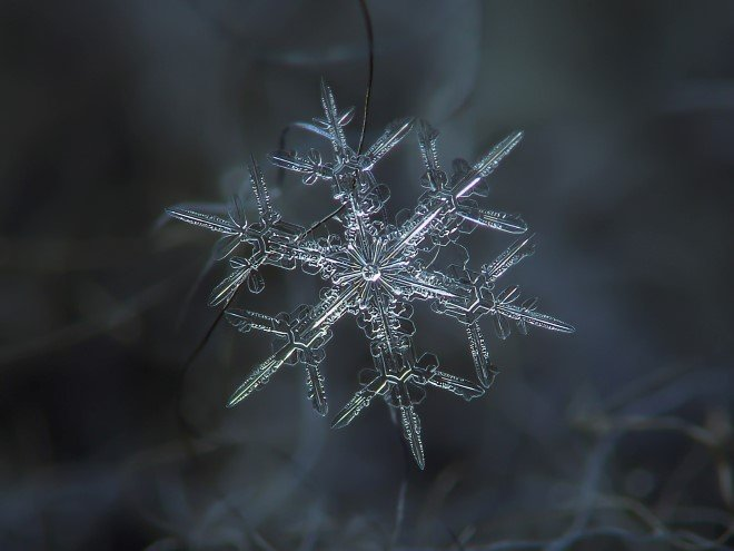Stunning Macro Images of Snowflakes (18)