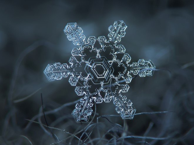 Stunning Macro Images of Snowflakes (2)