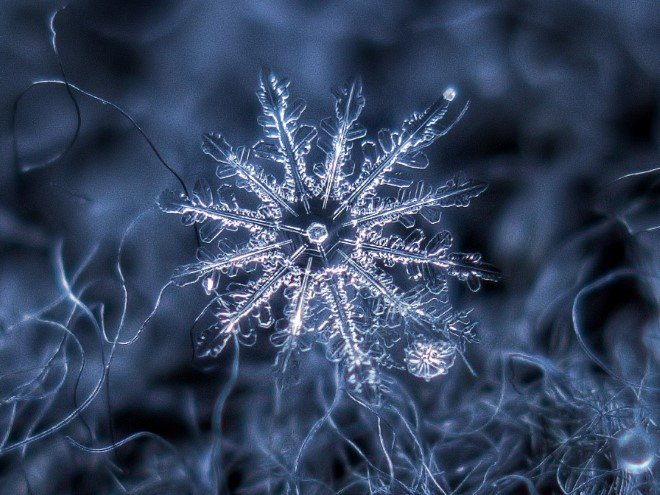 Stunning Macro Images of Snowflakes (20)