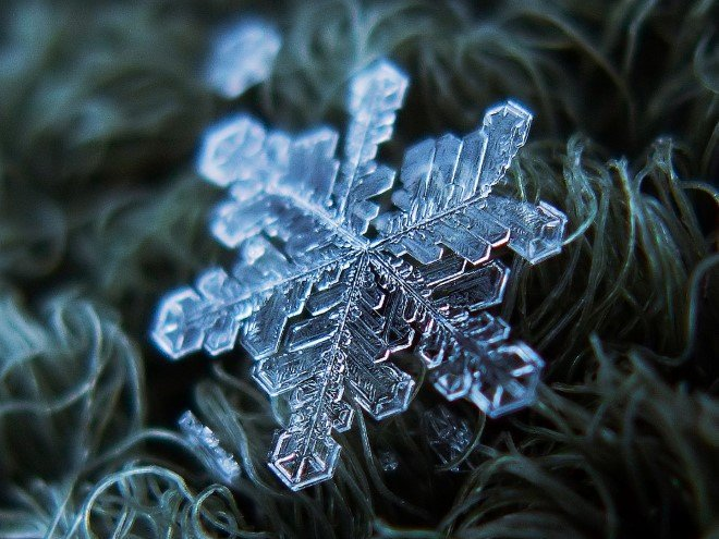 Stunning Macro Images of Snowflakes (22)