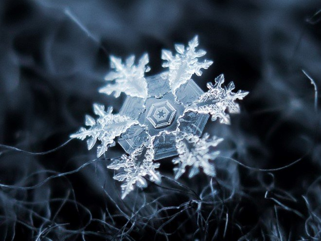 Stunning Macro Images of Snowflakes (24)