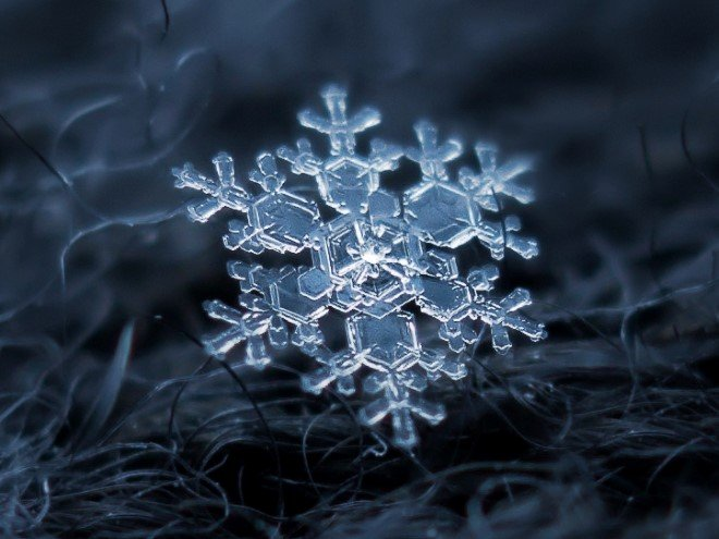 Stunning Macro Images of Snowflakes (25)