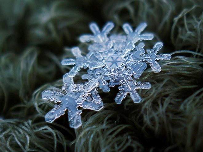 Stunning Macro Images of Snowflakes (29)