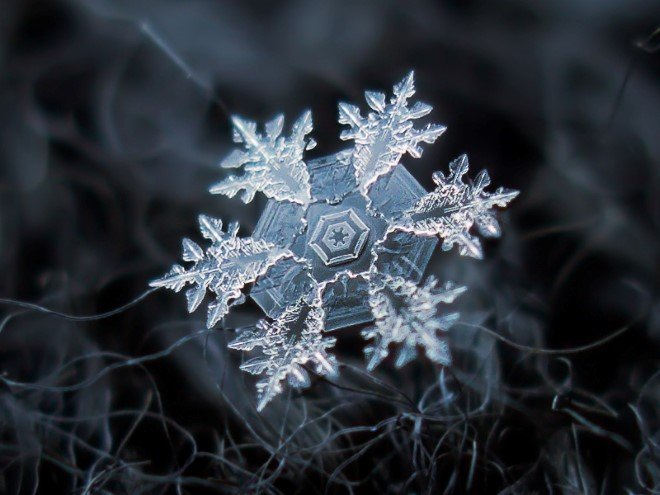 Stunning Macro Images of Snowflakes (30)