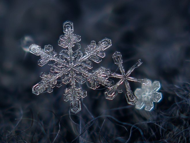 Stunning Macro Images of Snowflakes (31)