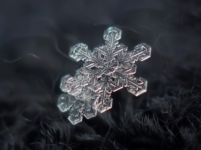 Stunning Macro Images of Snowflakes (32)
