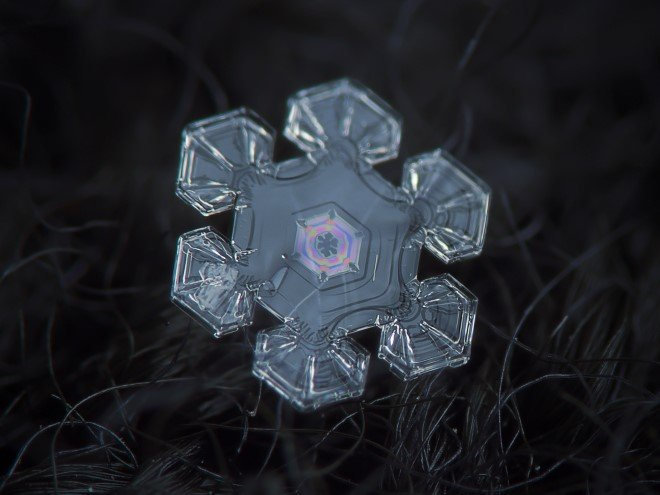 Stunning Macro Images of Snowflakes (6)