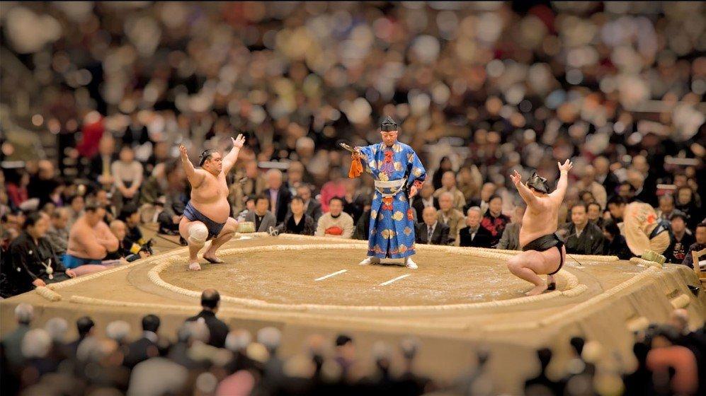 Toy Sumo by Ankhbayar Tumurbaatar
