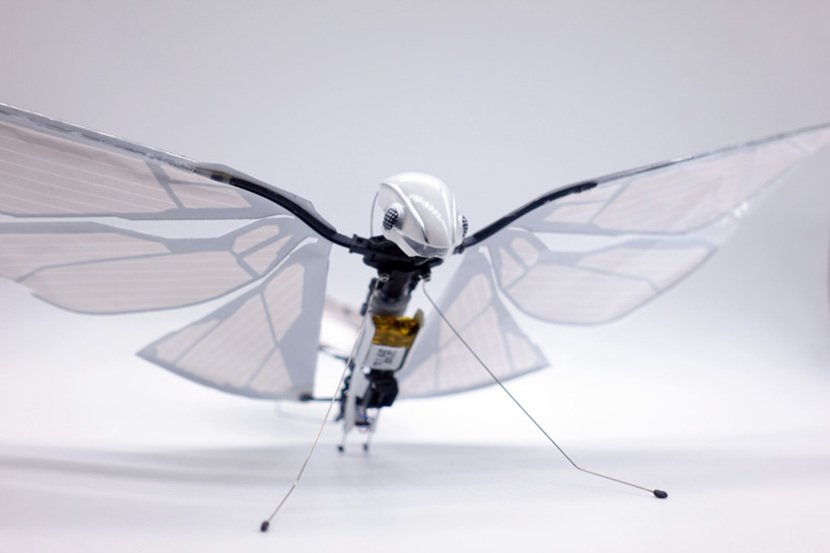 MetaFly bioinspired Insect Robot
