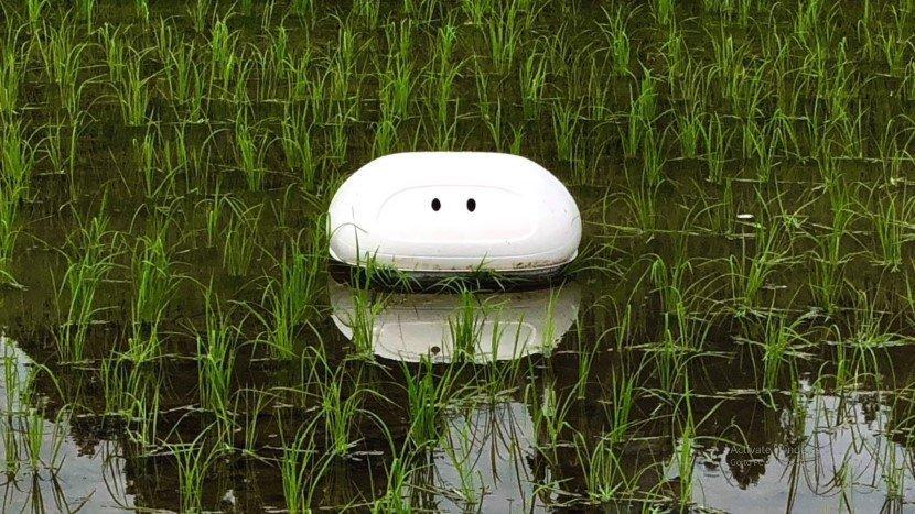 Nissan Robot Duck