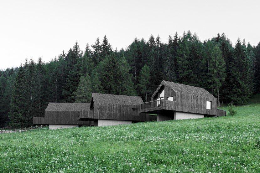 fan forest houses