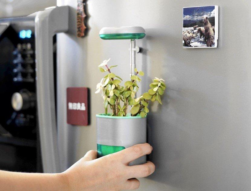 Self Watering Planter Pico