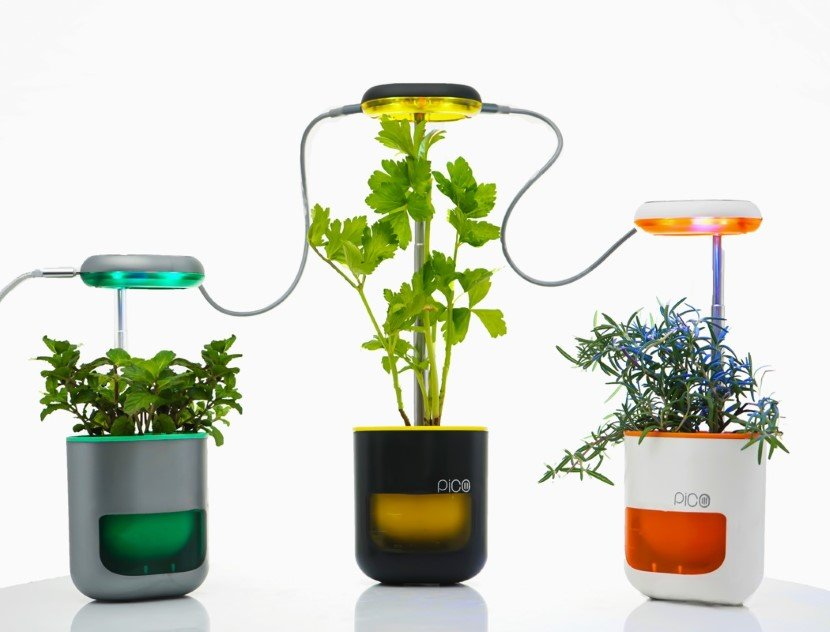Self planter
