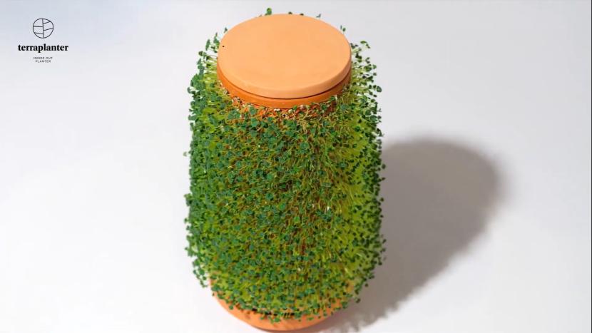 Terraplanter planter