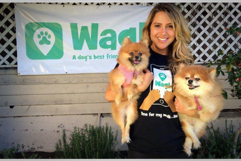 Wag! The dog walking app