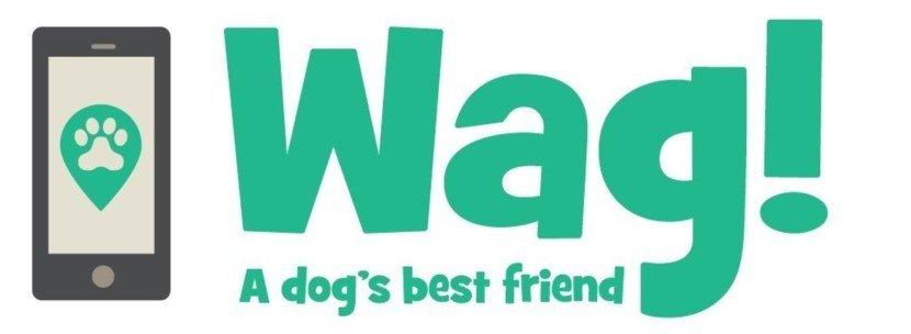 Best on demand dog walking app
